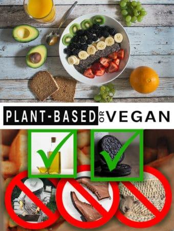 PlantBased or Vegan