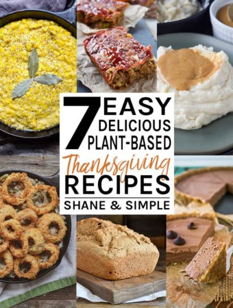 7 easy delicious plant-based thanksgiving recipes banner.