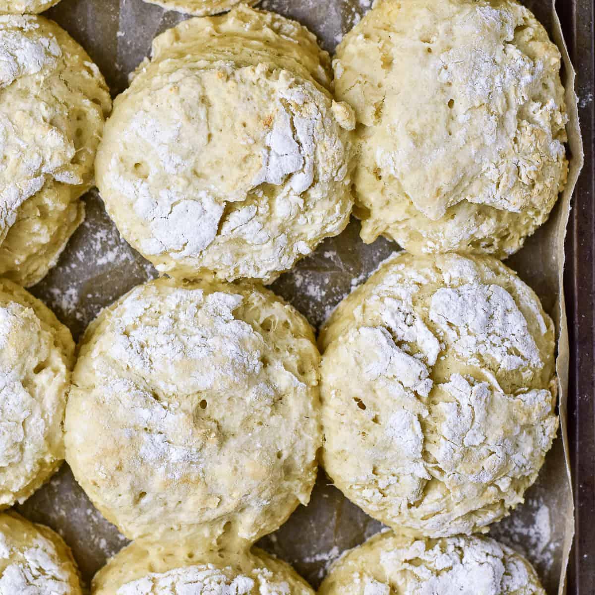 Best Vegan Biscuit Recipe Shane Simple