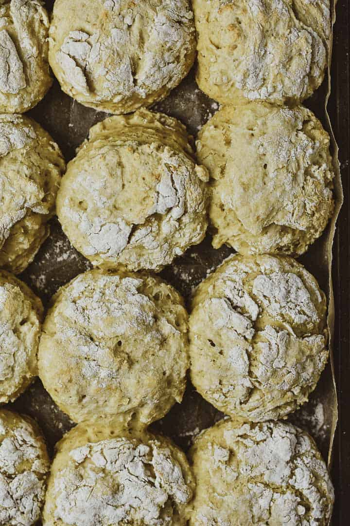 Vegan biscuits on baking sheet fresh out of the oven.
