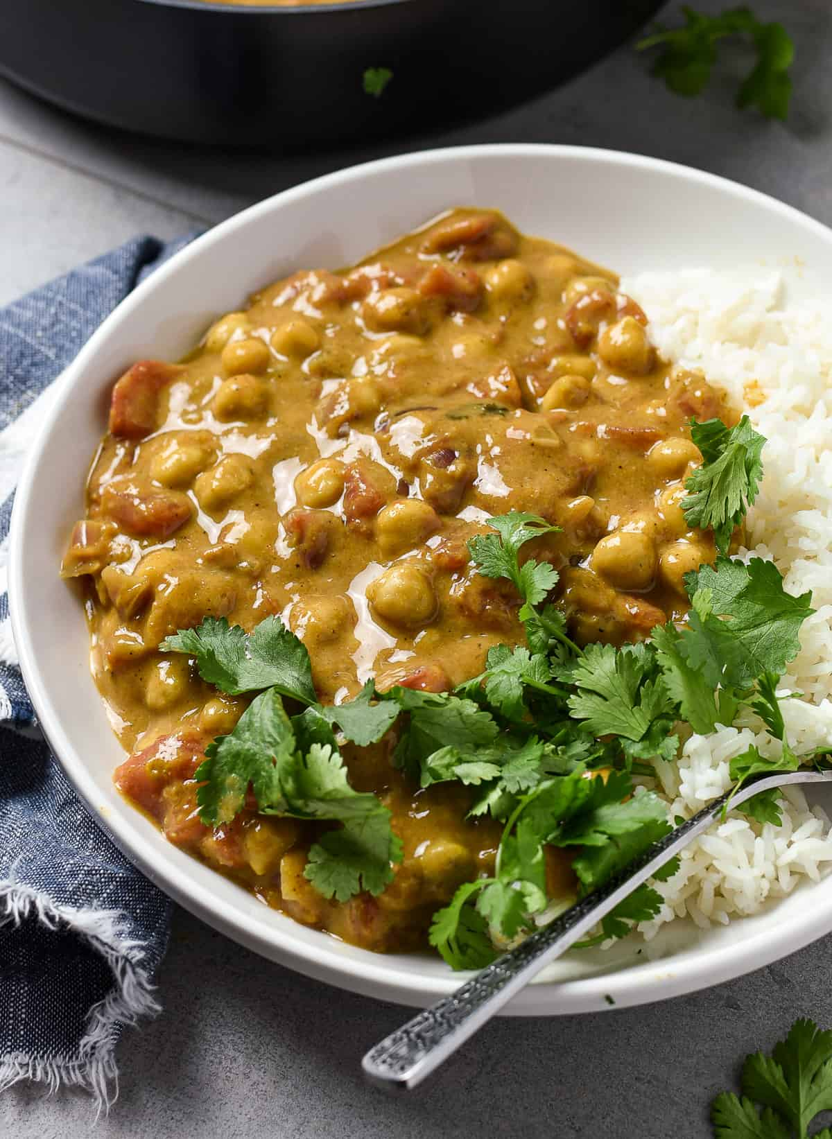 Curry and rice with cilantro on plate.