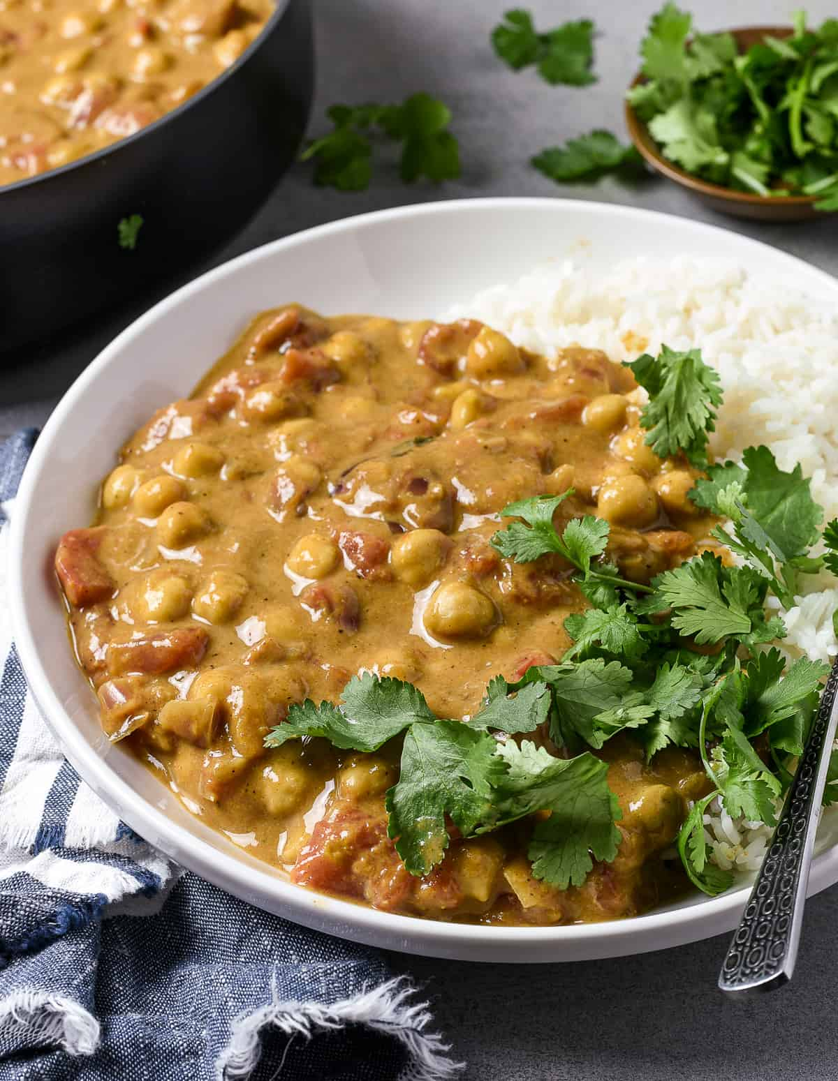 Vegan chickpea curry on top of rice and topped with cilantro.