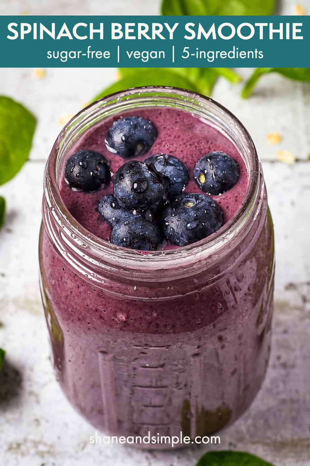 Start your day with this delicious Spinach Berry Smoothie! Packed full of vitamins and antioxidants, this smoothie recipe is easy, creamy, smooth, and you'll never taste the spinach. Vegan and dairy-free!