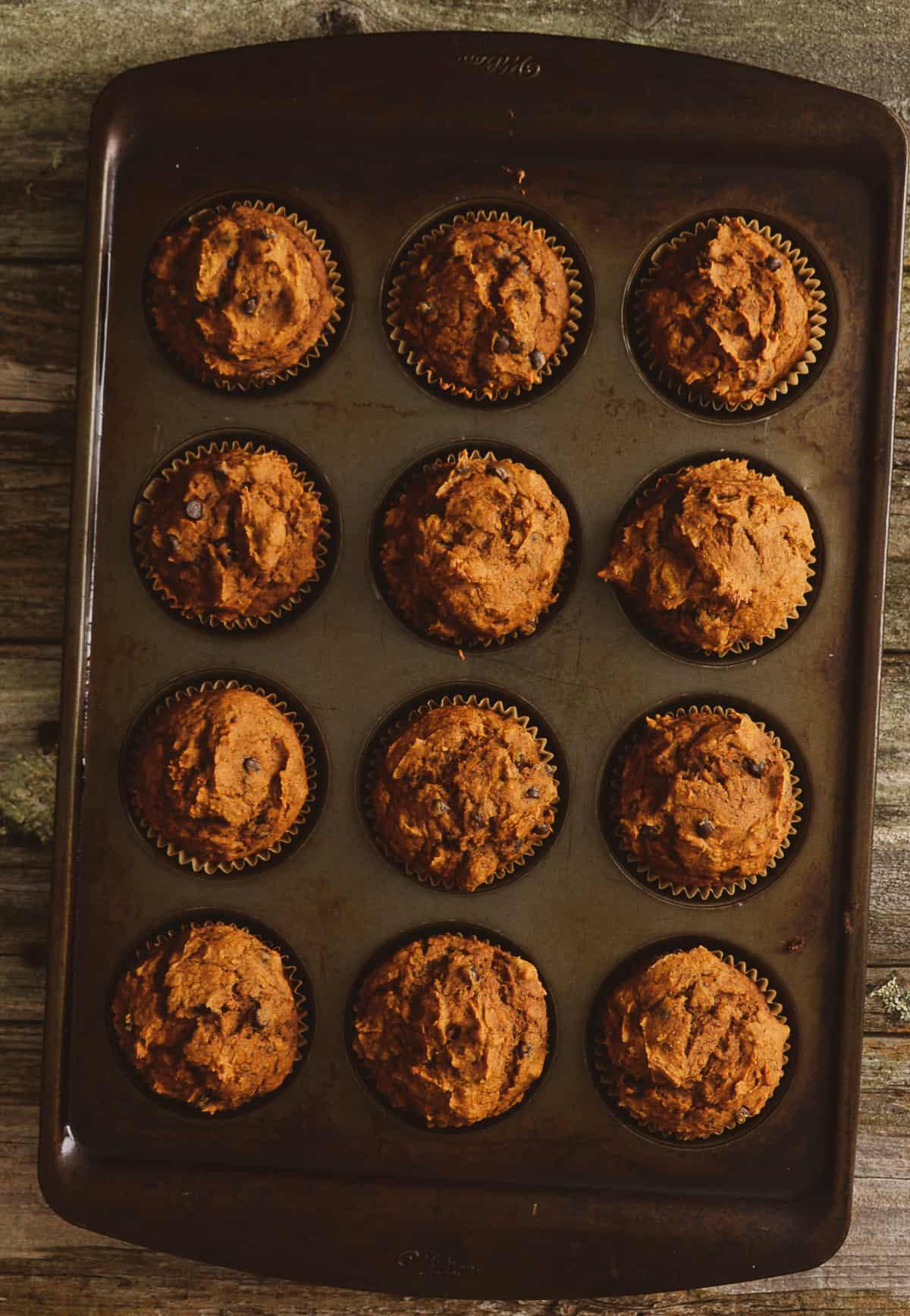 Pumpkin muffins in baking tray.
